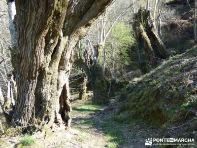 Sierra del Caurel (Serra do Courel) viajes en agosto viajes septiembre rutas cerca de madrid